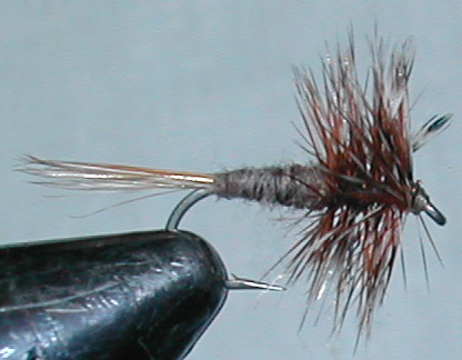 Adams trout fly