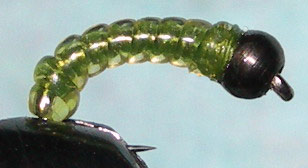 Blackbead Willow Grub trout fly