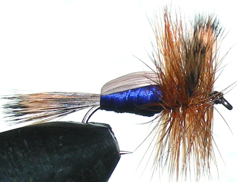 Blowfly Humpy brown trout fly