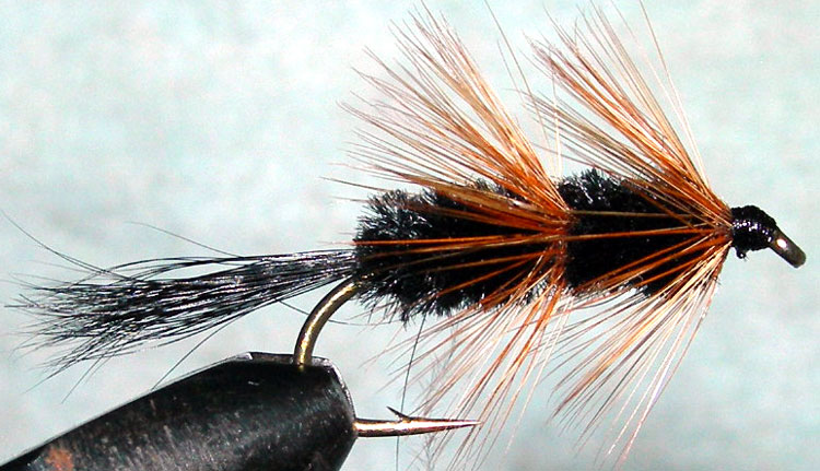 Bomber black trout fly