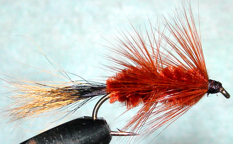 Bomber brown trout fly