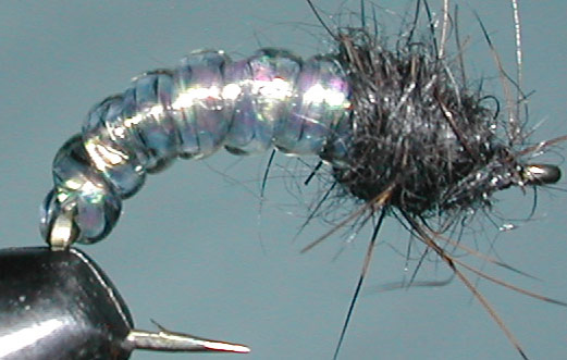 Caddis pearl trout fly