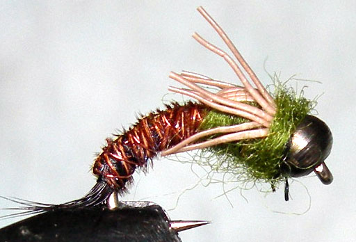 Cadillac Pheasant Tail Olive Thorax Blackbead trout fly