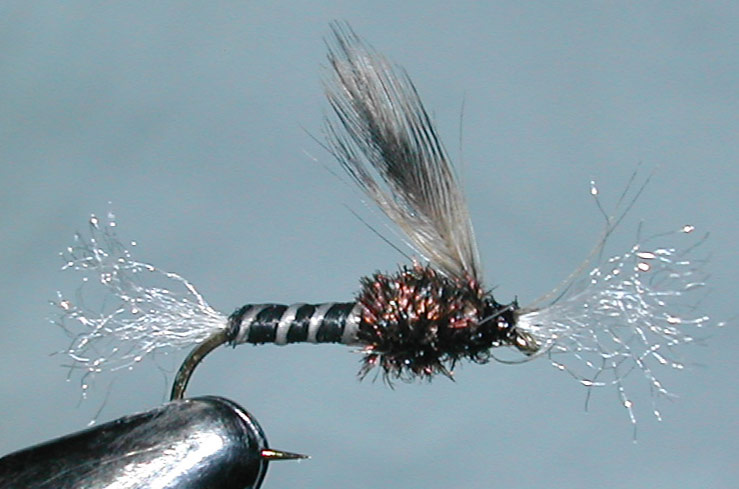 Chironomid Pupa trout fly