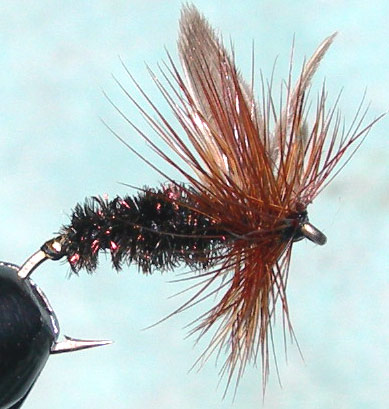 Coch y bondhu winged trout fly