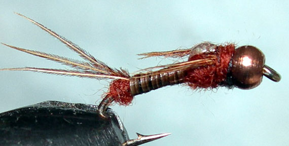 Copperbead Micro Mayfly brown trout fly