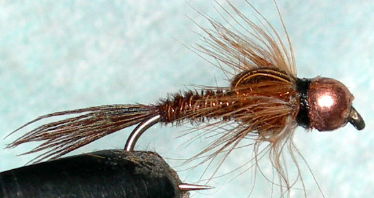 Copperbead Pheasant Tail copper thorax trout fly
