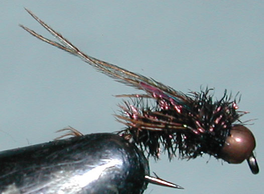 Copperbead Swimming Peacock trout fly