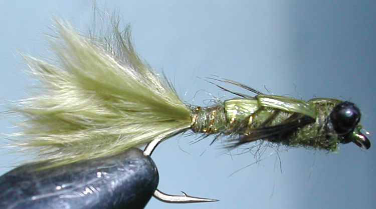 Damsel olive trout fly
