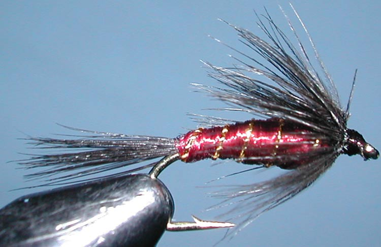 Daves Claret Nymph trout fly