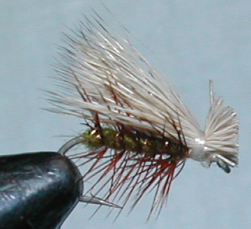 Elk Hair Caddis olive trout fly