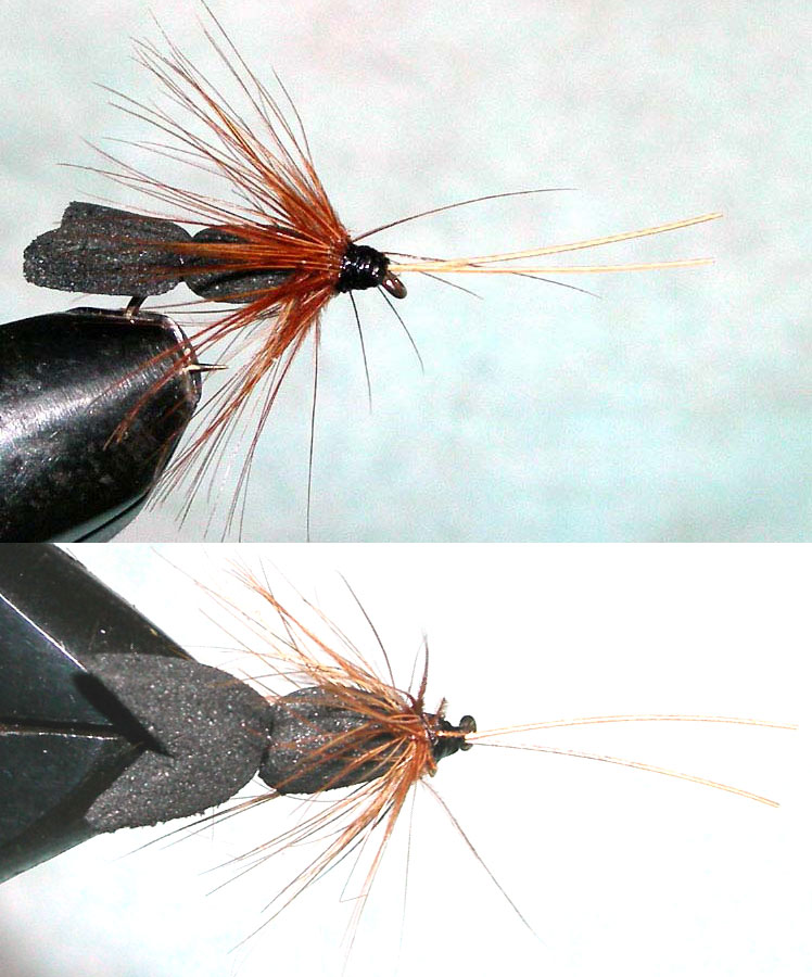Foamwing Sedge trout fly