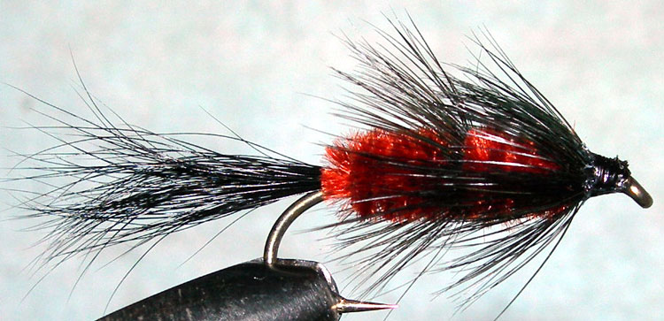 Fuzzy Wuzzy brown trout fly