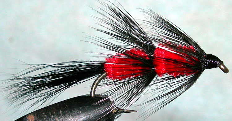 Fuzzy Wuzzy red trout fly