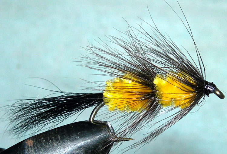 Fuzzy Wuzzy yellow trout fly