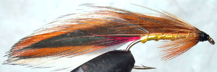 Ginger Mick trout fly