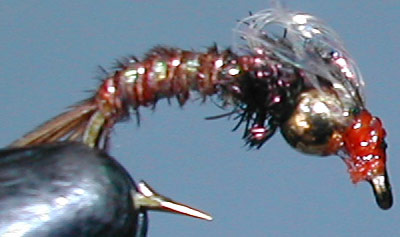 Goldbead Bubbleback Emerger trout fly