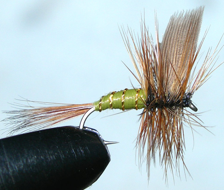 Greenwells Glory trout fly