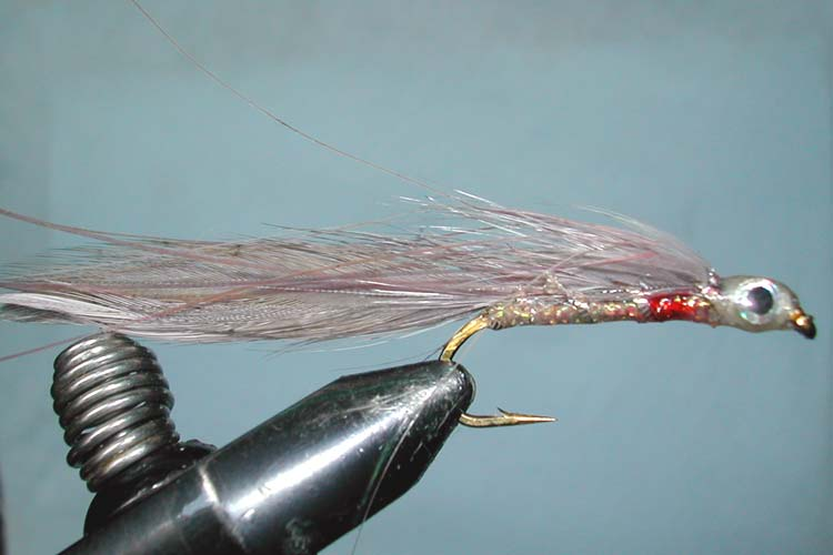 Grey Ghost Epoxy Head trout fly