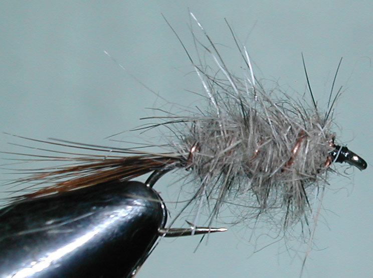 Hare&Copper trout fly
