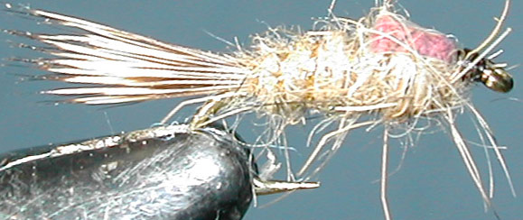 Hares Ear goldribbed Flashback trout fly