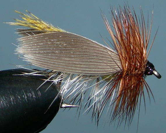 Henrysville Caddis trout fly