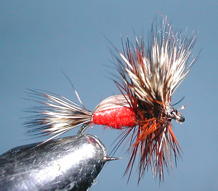 Humpy red trout fly