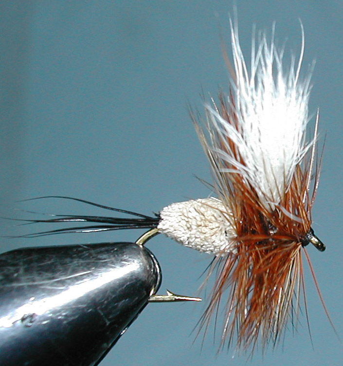 Irresistible Wulff trout fly