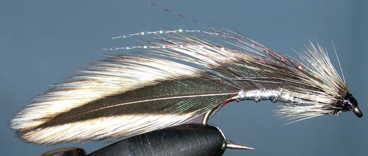 Jack Spratt trout fly