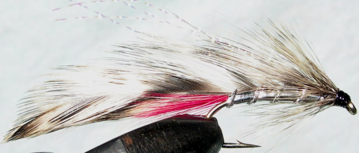 Jack Spratt honeygrizzly trout fly
