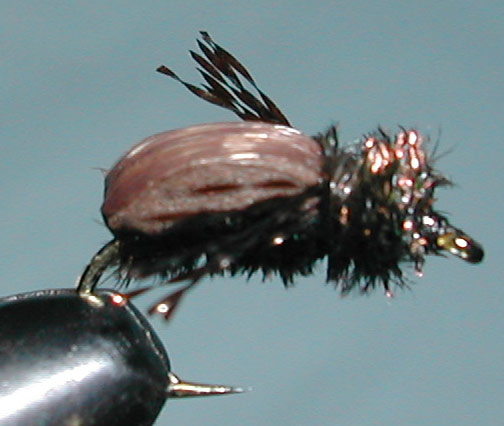 Japanese Beetle trout fly