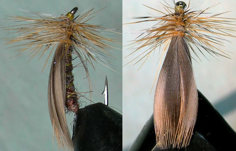Mallard Wing Caddis trout fly