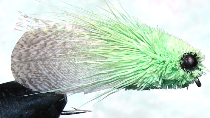 Mallard Wing Cicada mint green trout fly
