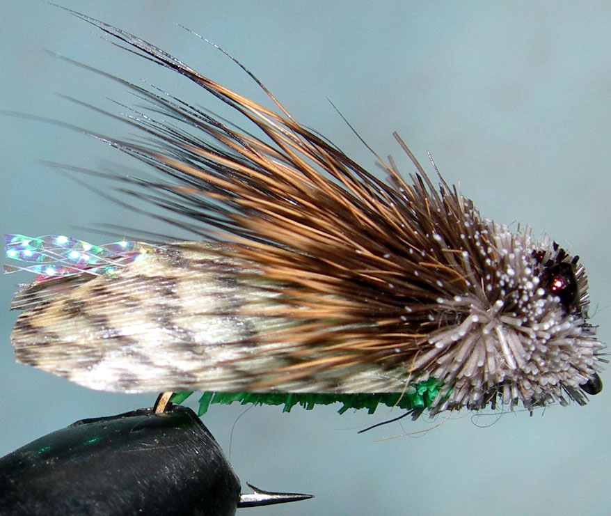 Mountain Cicada green Mallard Wing trout fly
