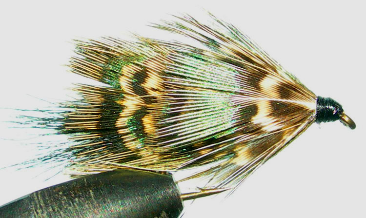 Mrs Simpson green trout fly