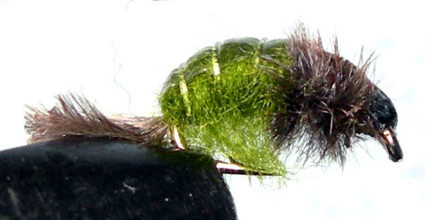 Netbuilder Olive trout fly