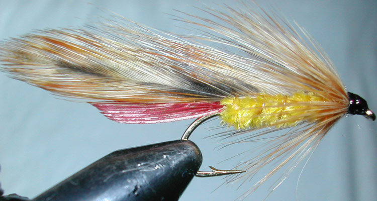 Parsons Glory trout fly