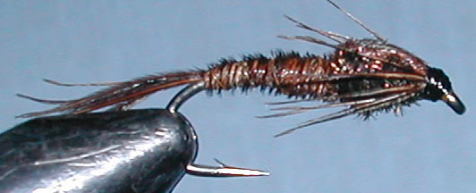Pheasant Tail trout fly