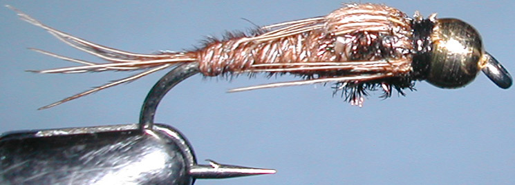 Pheasant Tail peacock Goldbead trout fly