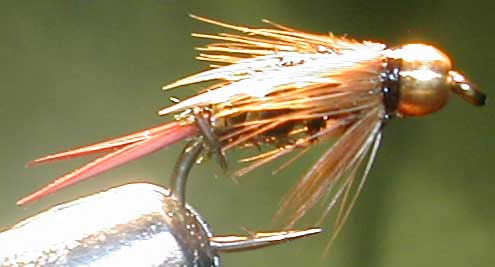 Prince Goldbead trout fly