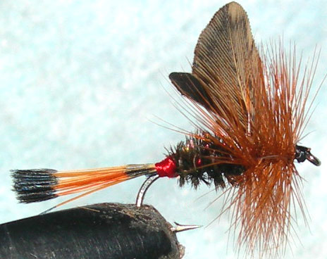 Red Tipped Governor trout fly