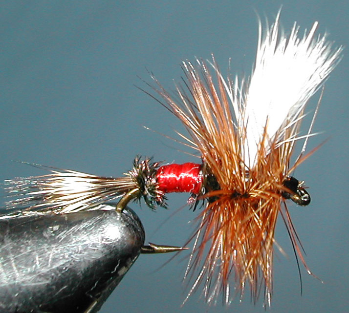 Royal Wulff trout fly