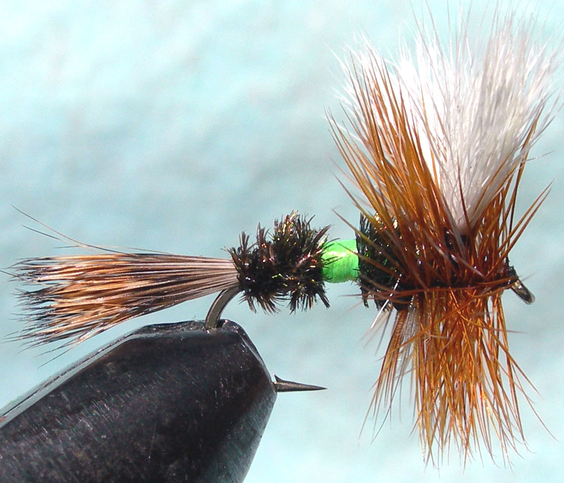 Royal Wulff fluorogreen trout fly
