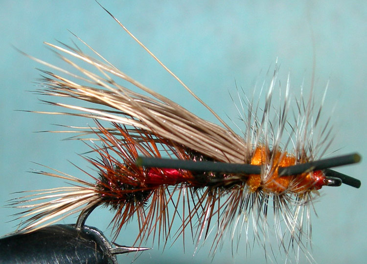 Rubberlegged Royal Stimulator trout fly