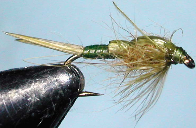 Stone olive trout fly