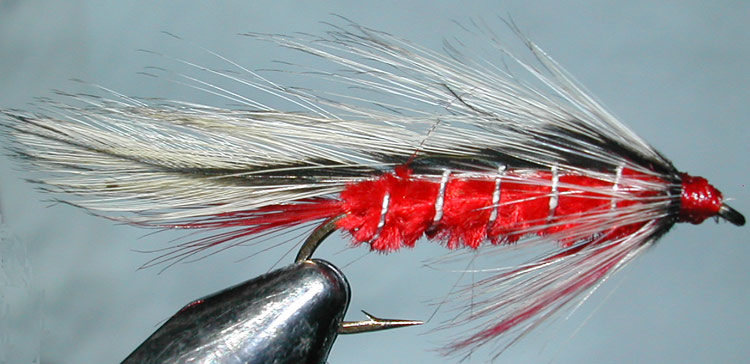 Taupo Tiger trout fly