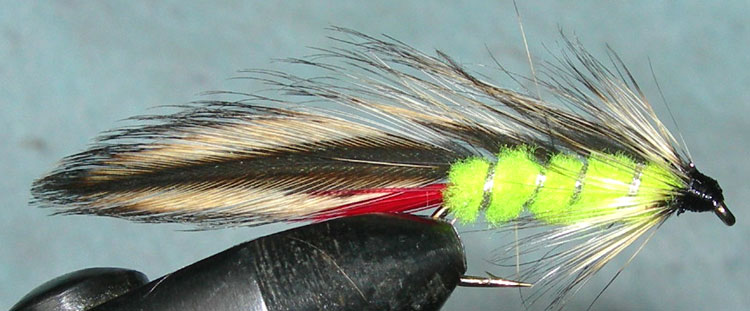 Taupo Tiger fluorogreen trout fly