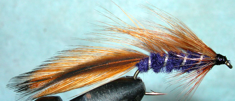 Taupo Tiger furnace purple trout fly