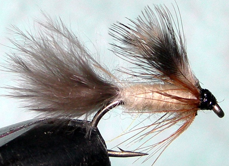 Timberline Emerger trout fly