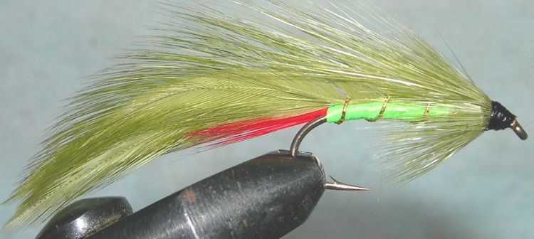Tims Special trout fly